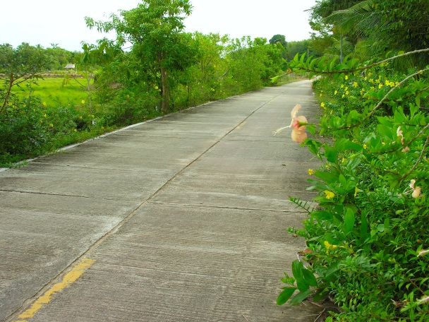 A lovely road on gorgeous yet modest Ko Sukorn.